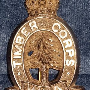 WW2 Womans Land Army Timber Corps (Lumber Jill's) Plastic Economy Cap Badge 2.14091