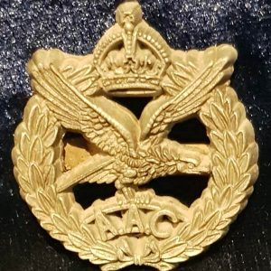 WW2 Army Air Corps Plastic Economy Issue Cap Badge   B.8440
